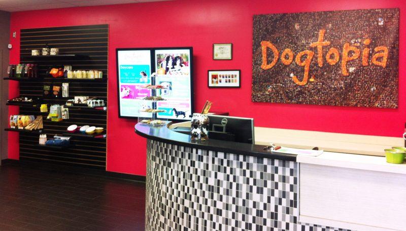 Dogtopia Canton Store